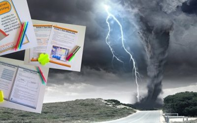 How To Write A Natural Disasters Research Report